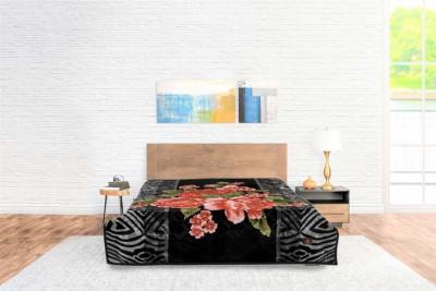 Blanket Goldendream Black