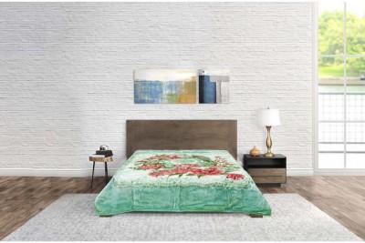 Blanket Tender Touch Premium G